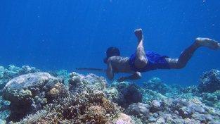 Lidé z kmene Bajau vydrží pod vodou extrémně dlouhou dobu díky sérii mutací