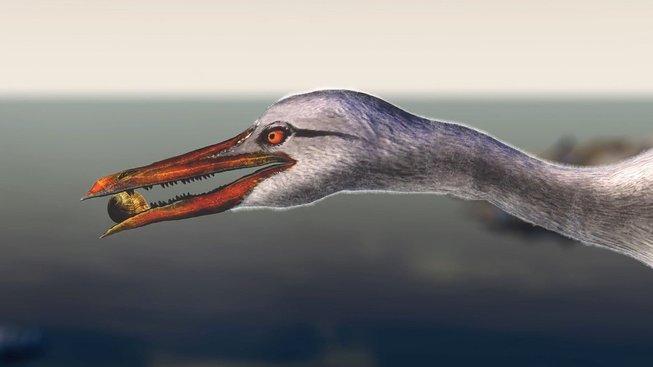 Nálezy lebky Ichthyornise odhalují, jak vznikl ptačí zobák