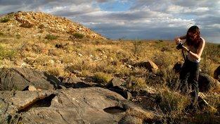 Čím starší organismy, tím těžší je objevit jejich zkameněliny. Ilustrační snímek