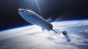 BFR_Sep_A_Longnose