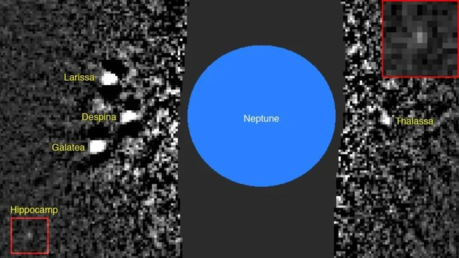 Hippocamp a Neptun