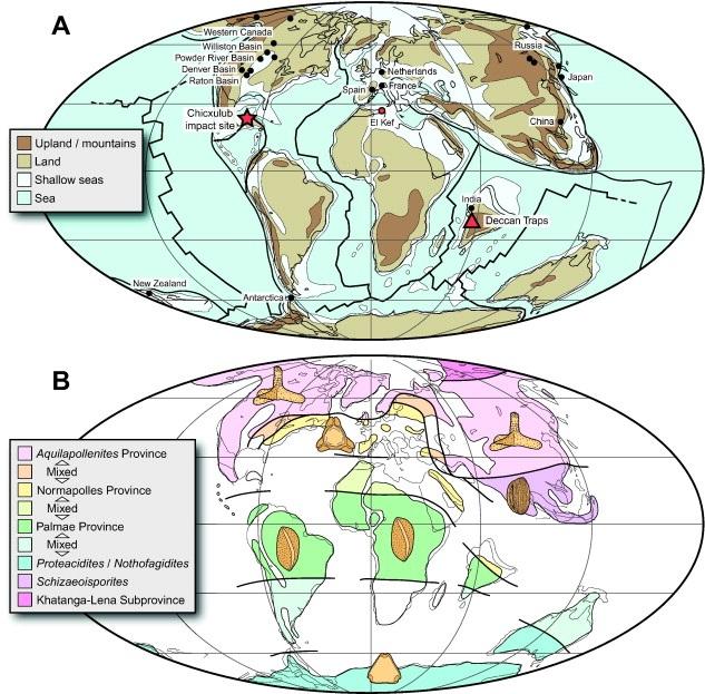 Mapa předpokládané vegetace z loňské studie