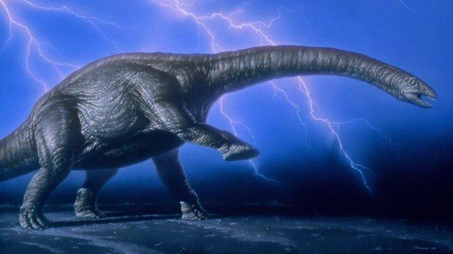 Apatosaurus. Ilustrace