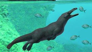Předchůdci velryb před víc než 40 miliony lety