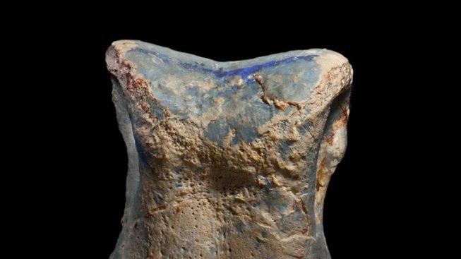 Zub zachovaný v opálu