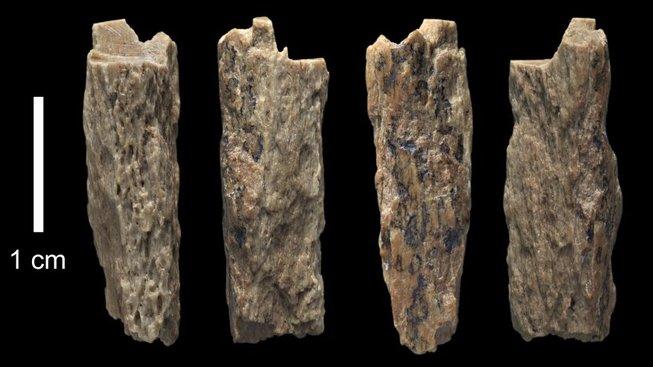 fragmenty kostí