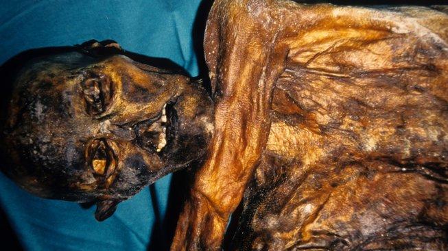 Ötzi čili Homo tyrolensis. Čověk, který žil v období mezi roky 3400 až 3100 před naším letopočtem. Ledovec z něj vytvořil přírodní mumii