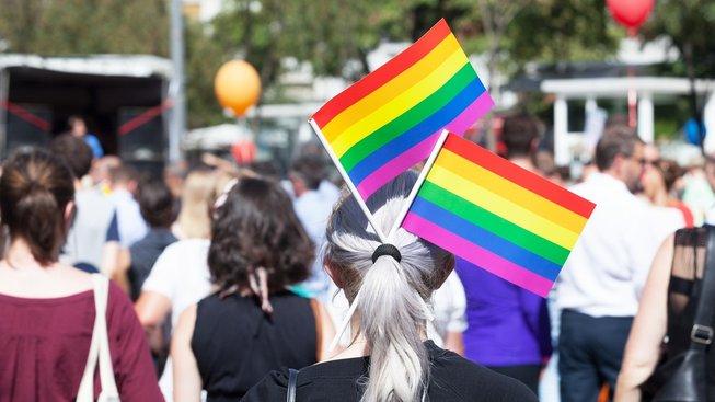LGBT vlaječky. V živočišné říši by je mohl nosit kdekdo