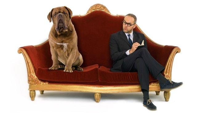 Co se divíte? I pes občas potřebuje psychoanalytika (cvokaře)