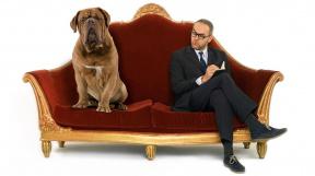 profimedia-0295104209  pes u cvokaře u