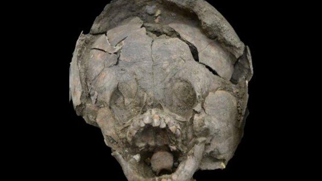 Snímek obrazovky (115) skull North Virginia