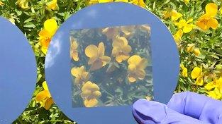 Neprůhledné solární panely se mohou stát průhlednými, pokud se do nich navrtají mikroskopické otvory