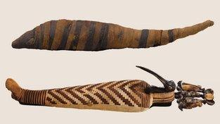 Sarkofág s mumií ibise posvátného