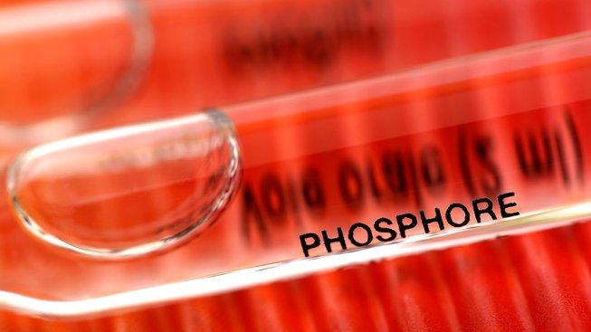 profimedia-0101866168 phospore