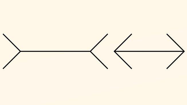 profimedia-0102991404 m-l illusion upr