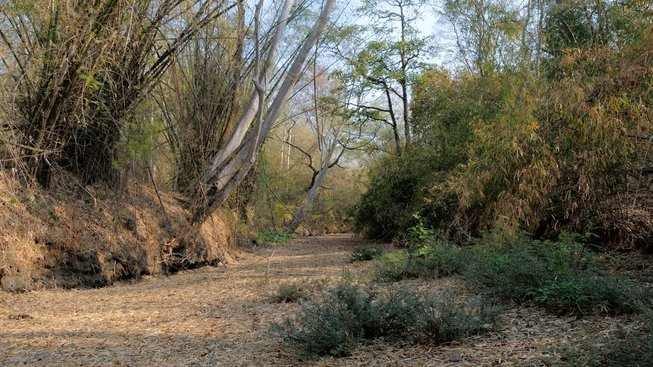 dry river bed2