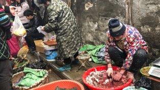 Snímek obrazovky (147) wu chan market