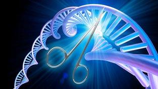 Koncepční ilustrace editace genů