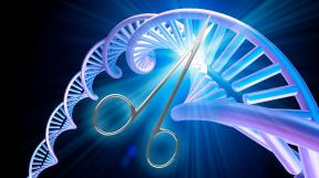 profimedia-0370315506 genetické nůžky