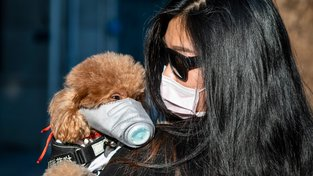 Žena a její pes - oba s rouškou - v čínské Šanghaji