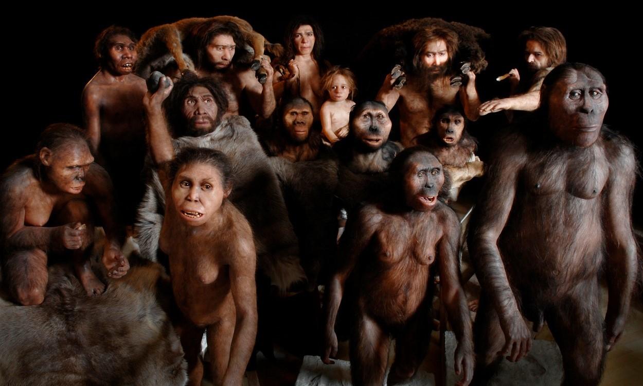 profimedia-0147022429 (1) ancestors