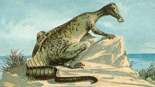 Hardosaurus - kachnozobý dinosaurus, který trpěl rakovinou