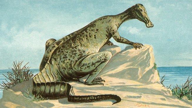 Hadrosaurus - kachnozobý dinosaurus, který trpěl rakovinou