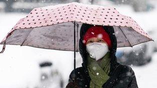 Chladné počasí virům prospívá