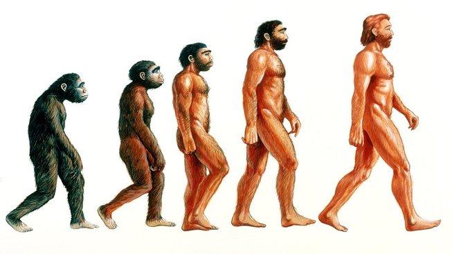 profimedia-0102205196 evolution man upr upr