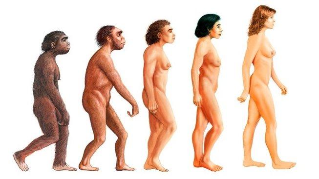 profimedia-0261331672 evolution woman upr upr