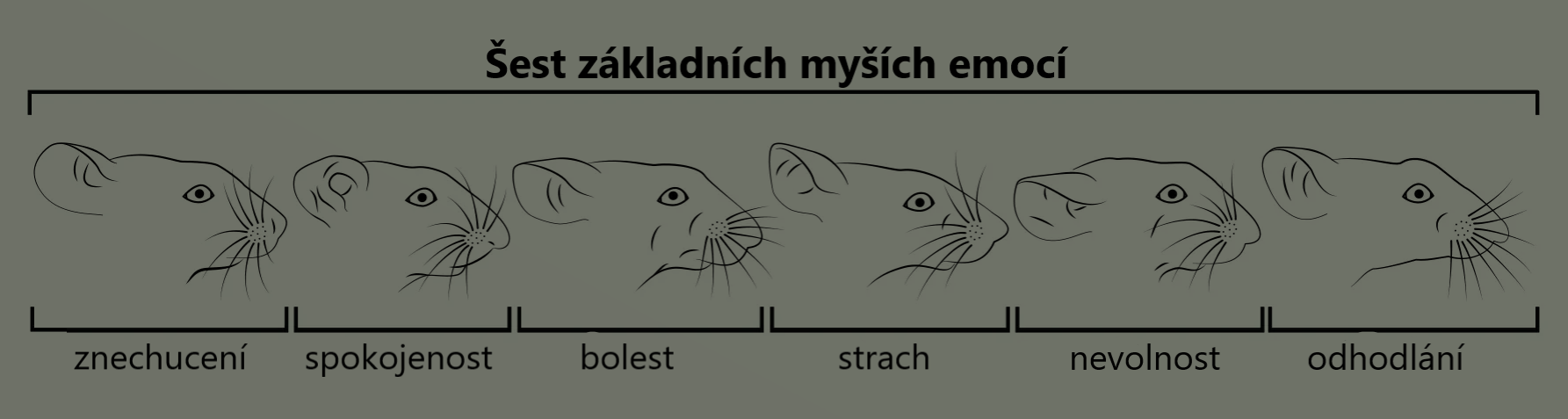 mouse emotions