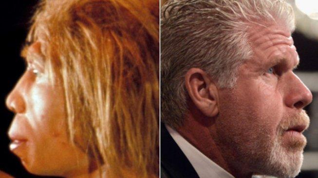 Neandrtálec modelovaný podle nálezu lebky (vlevo) a hollywoodský herec Ron Perlman (vpravo), který jako kdyby vyvracel závěry genetického výzkumu