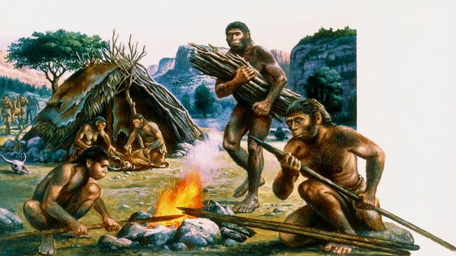 profimedia-0102206406 homo erectus