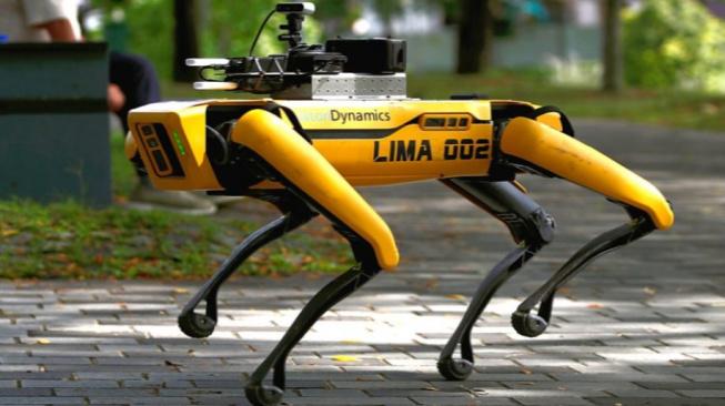 Robotický pes na patrole