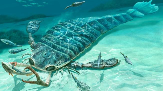 profimedia-0175206316 sea scorpion