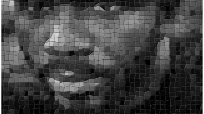 Tvář na rozkostičkovaném rastru během analýzy neostrého snímku. Na fotografii není obviněný Williams.