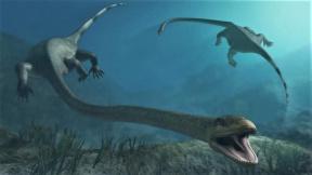 prehistoriccc
