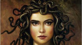 Medúza, inspirace pro umělce. Kdo jí pohlédl do očí, zkameněl. Totéž umí dělat megaviry na buněčné úrovni.
