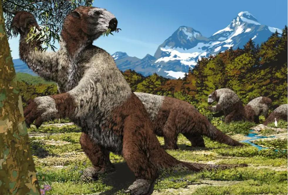 Obří lenochod z doby ledové