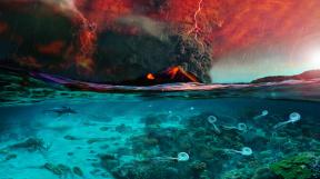 Mass-Extinction-Illustration-Jurikova u