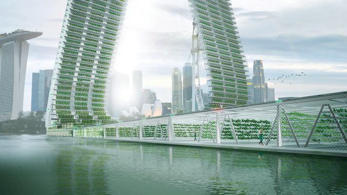 Farmy se budou zvedat k obloze. Uživí města?