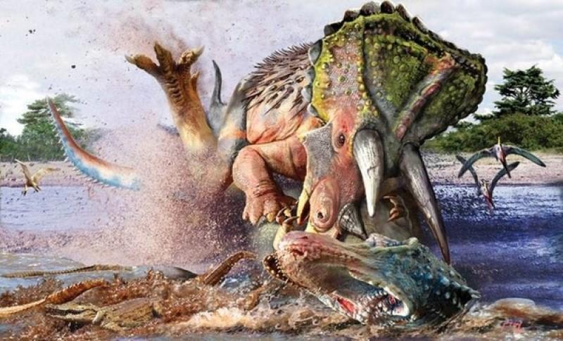T-rex battle2