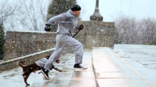 Nemusíte si dávat koňské dávky jako Rocky, ani mlátit do syrového masa. Stačí půlhodinka běhu, anebo jen rychlé chůze.