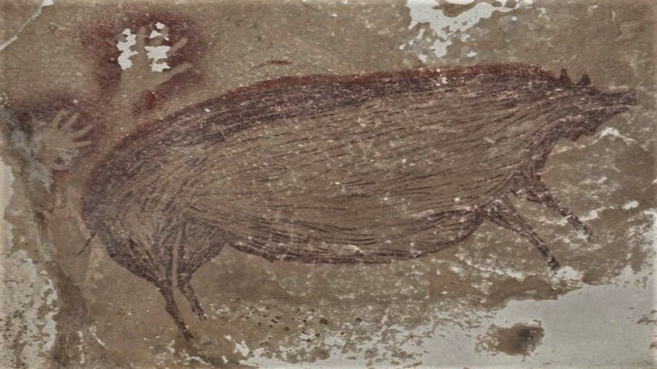 Není to Mucha či Manet, ale... Nejstarší jeskynní malba člověka zobrazuje prase