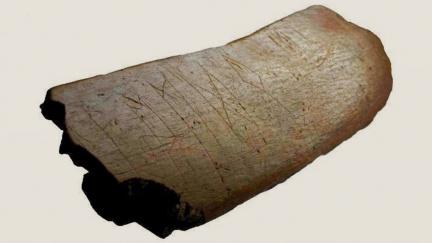 Převratný objev: Nejstarší písmo Slovanů není hlaholice, ale germánské runy