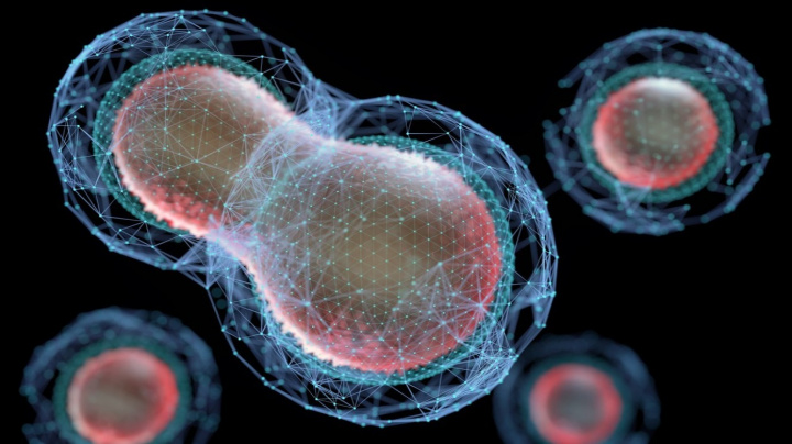 Vědci vytvořili 'umělý život', který se množí