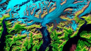Kolorovaný satelitní snímek ledovce Columbia na Aljašce.