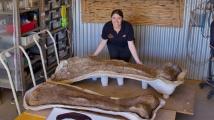Gigant a australského outbacku