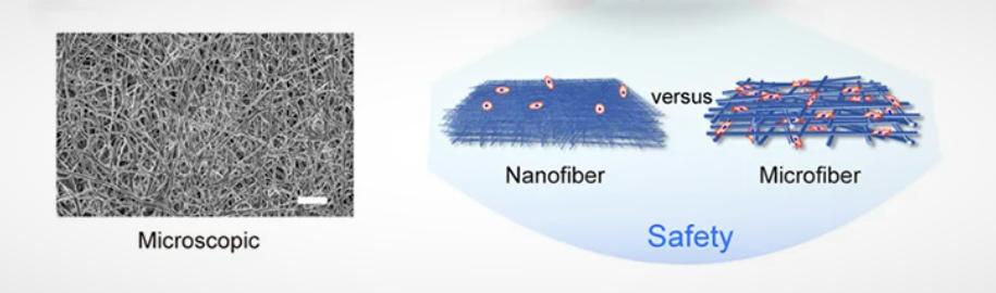Wang et al. nanostructure