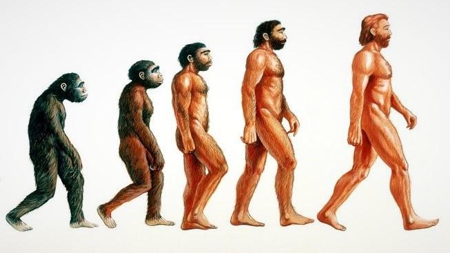 1152271-profimedia-0102205196-evolution-man-upr-upr-653x367